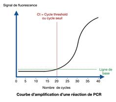 Courbe d'amplification d'une réaction de PCR